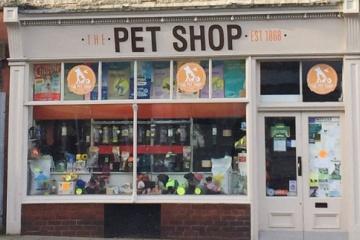 【犬猫】 ペットショップ店員だけど質問ある? ・・・ペットショップの売れ残った子はどうなるのか