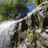 『滝』の画像