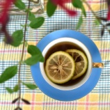 『植菜物語(2100回記念)(30)・青柚子の季節(4)』の画像