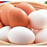 韓国「鳥インフル真っ只中だけど…一日だけ卵の搬出するね!!」