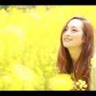 『★本日のYouTube動画』の画像