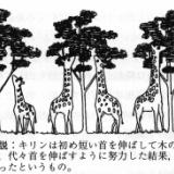 進化論のラマルクの説ってアホくさくない?