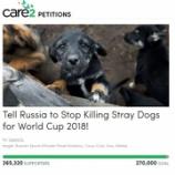 『犬の虐殺中止へ:ワールドカップ2018』の画像