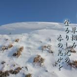 『春の息吹』の画像