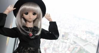 娘(人形)とスカイツリー&東京タワーに行ってきたで!