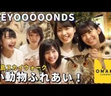 『【OMAKE】BEYOOOOONDS《三島スカイウォーク》小動物ふれあい!』の画像