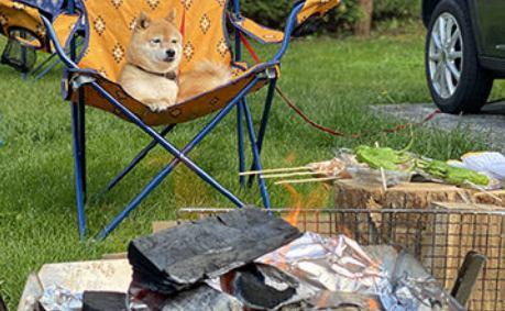 ワンコと一緒に「キャンプ飯!」