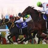 『第872回(回顧)2017年エリザベス女王杯/モズカッチャンが理想的な競馬で強豪古馬たちを制す』の画像