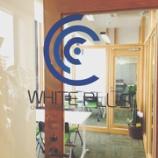 『WHITE PLUSのオフィスにおじゃま!』の画像