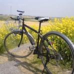 自転車やら何やら同好会