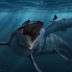 昔「スピノサウルスは強かった。ティラノ殺してた。」少し前「水中活動もできて鮫も殺してた。」最近「お魚恐竜だわこいつ」