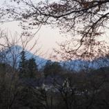 『富士が見える季節』の画像