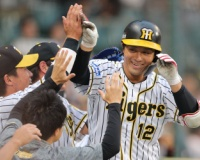 一部の阪神ファン「坂本は他球団なら正捕手」←これ