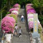 『いつか行きたい日本の名所 大興善寺』の画像