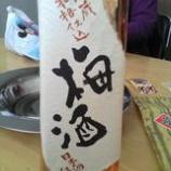 『2007年のお酒〜梅酒編〜』の画像