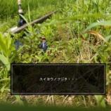 『【ひょっこりはん】水曜日の藤田』の画像