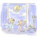 キレイなお月さま