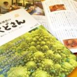 『東播磨の野菜や生産農家を紹介!「東播磨のおくどさん」創刊』の画像