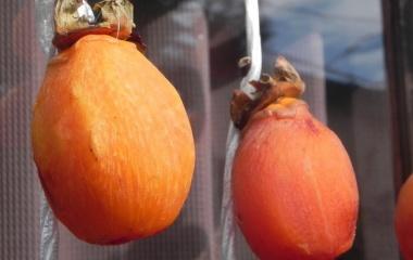 『なんとか無事に干し柿ができあがりました( ´艸`)』の画像