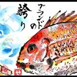 『高級魚バイバイ』の画像