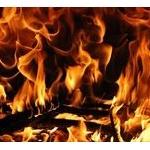 「本日わたしは炎上しました」が作者過去ヘイトツイートにより連載打ち切り