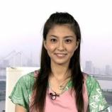 『【緊急】小林麻央の乳がん「ステージ4」だった!!?とある乳がんブロガーが衝撃発言・・・』の画像