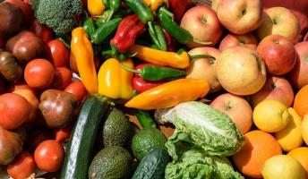 【雑学】身近な野菜や果物や食品添加物のうんちくを農学部出身の俺が語るスレ
