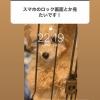 【NGT48】荻野由佳のスマホのロック画面wwwwwwwwww