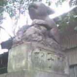 『うさぎの神社(続き)』の画像