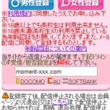 『moment/サクラ出会い系サイト評価』の画像