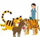 生きたロバをトラの檻に放り投げ見世物にした中国の動物園  批判殺到したためロバの追悼像を建設