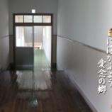 『思い出の廊下』の画像