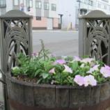 『お花で元気な商店街を目指して!』の画像