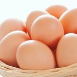 『【悲報】卵、ガチで今落下中・・・』の画像
