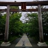 『コペンで高麗神社へ訪問。マリオメーカー2をカツアゲされた話。』の画像
