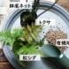 【ガーデナー直伝】インテリアになる夏の寄せ植え