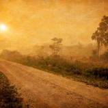『田舎のヤバい風習に巻き込まれた』の画像