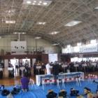 『ちびっこヤングフェスタ剣道大会。』の画像