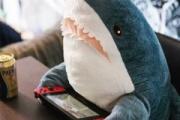 サメ映画とゾンビ映画ってどっちの方が多いんだろうか