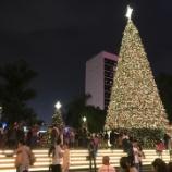 『巨大クリスマスツリーのイルミネーション☆「香港ウィンターフェスタ」開催中♪』の画像