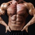 筋肉まとめ