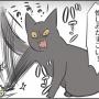 爪切りへの憎しみがすごい猫