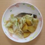『ムーンシャドウデイサービス/手作り昼食(鮭のチャンチャン焼き)』の画像