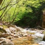 『「上善如水」美しい渓谷』の画像