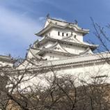 『人生はマラソンだ!フル8本目〜オール姫路の底力を見た!@世界遺産姫路城マラソン2019』の画像