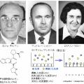 第77回ノーベル生理学・医学賞 ギルマン、シャリー、ヤロー「ペプチドホルモン」の分離・分析・はたらきの解明