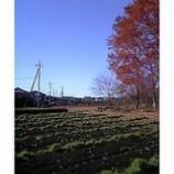 『富士山を拝む』の画像