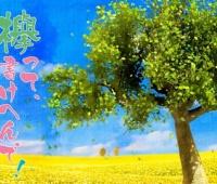 【欅坂46】『欅って、かけへんで!」キタ━━━(゚∀゚)━━━!!