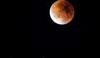 月面の僅かな色を強調した画像が宝石のようで美しい