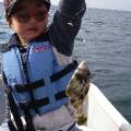 カワハギ釣りに行ってきた